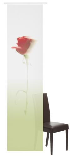 Flächenvorhang Elbersdrucke  Baccara rot-grün
