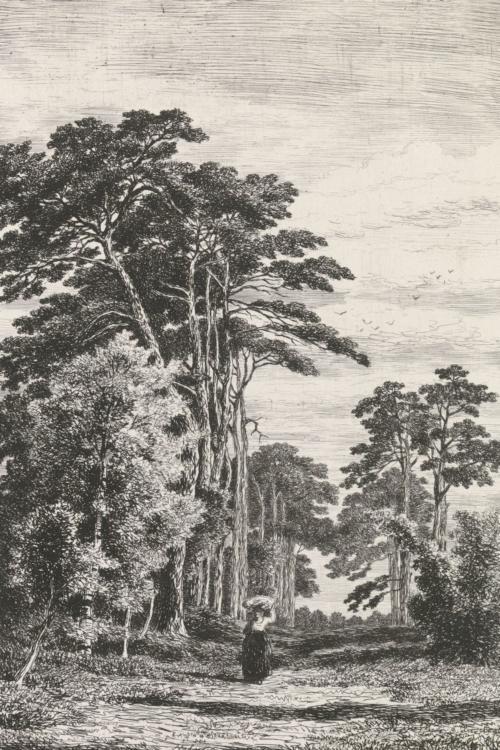 Photowall Rasch Textil, Blush, 158886