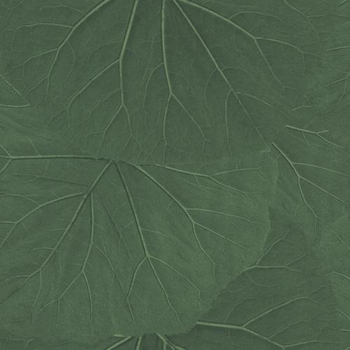 Tapete Rasch Textil, Jungle Fever, 138996