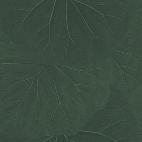 Tapete Rasch Textil, Jungle Fever, 138997
