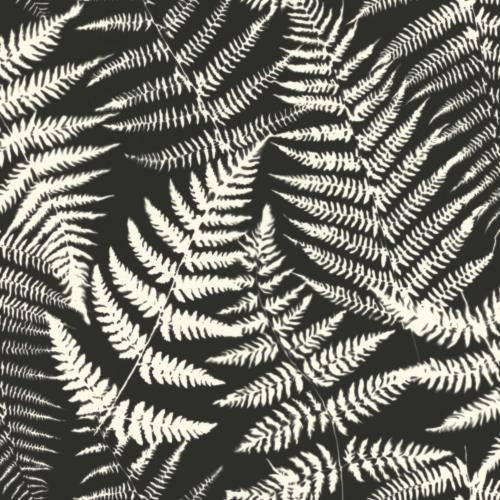 Tapete Rasch Textil, Jungle Fever, 139001