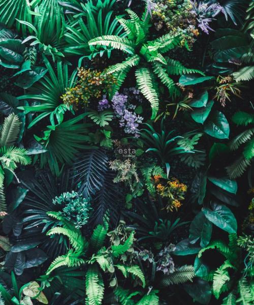 Photowall Rasch Textil, Jungle Fever, 158900